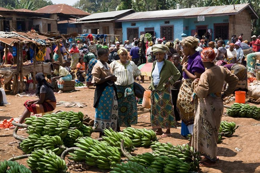 Varias mujeres venden bananas en el mercado local de distrito tanzano de Mamba South. / J. Marcos