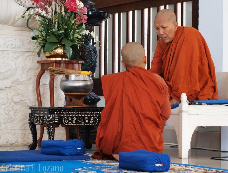 """""""Las bhikkhunis no venimos a coger la silla de la riqueza sino de la responsabilidad""""./ C.E.L."""