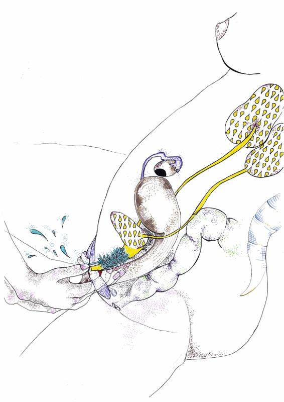 Técnica para estimular la próstata./ Ilustración de MagnaFranse para 'Coño Potens'