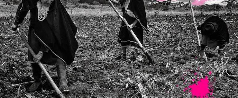 sangre fucsia mujeres bolivianas labran las tierras de la comunidad