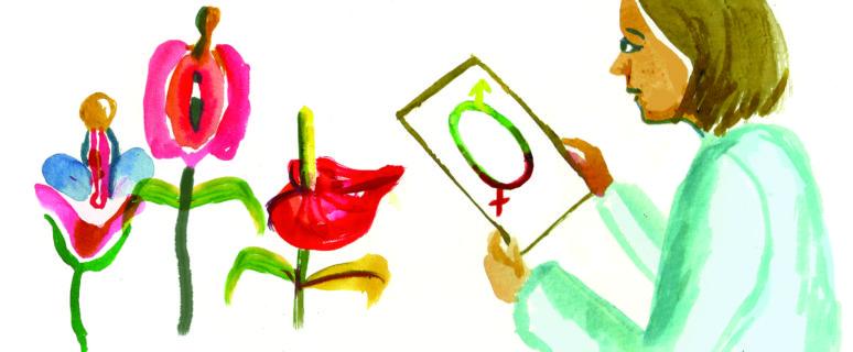 Ilustración de Núria Frago