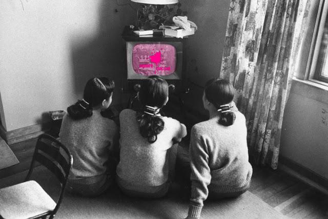 Series feministas - Sangre Fucsia