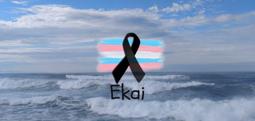Imagen de Chrysallis Euskal Herria en recuerdo de Ekai