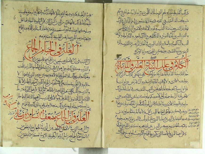 La Enciclopedia del Placer del siglo XIII ./ Foto cedida por la autora