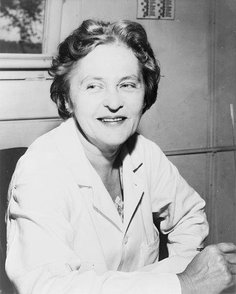 Mária Telkes. /