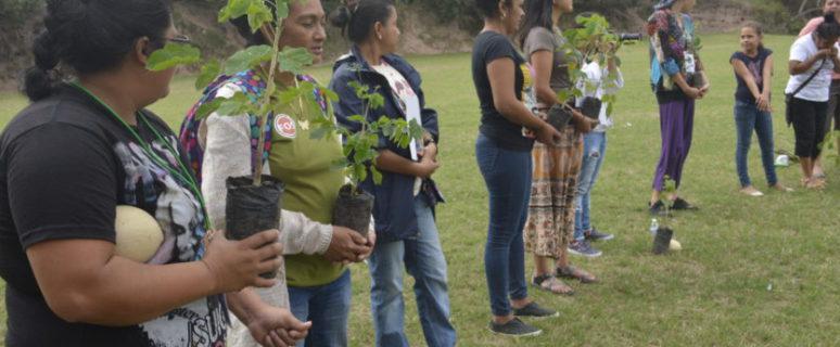 Una acción de la misión 'El abrazo' en Chinda. / Foto: Florencia Goldsman