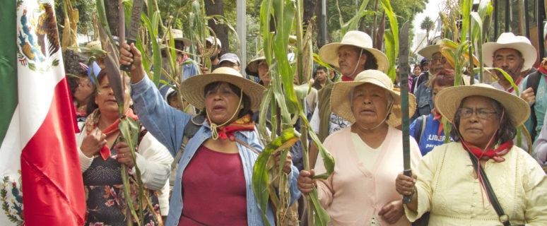 Varias mujeres con banderas de México, sombreros participan en una marcha